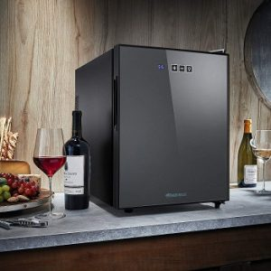 wine-enthusiast-12-Bottle-tabletop-wine-cooler